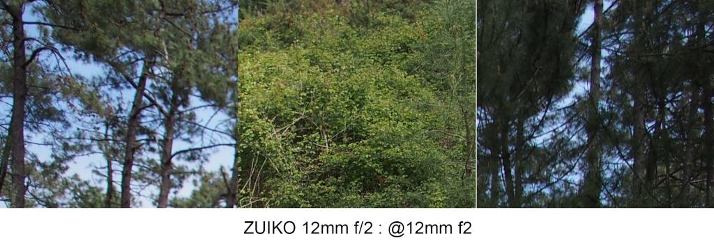 Comparo 12mm f2 / 12-40mm f2.8 / 12-50mm @12mm 12mm_f10