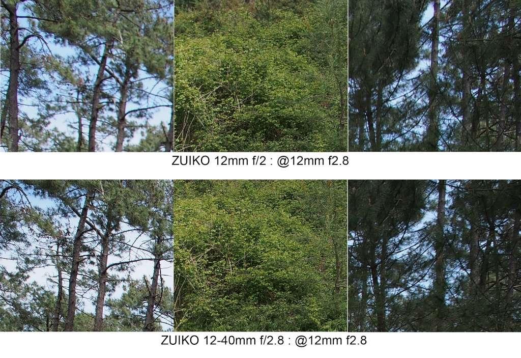 Comparo 12mm f2 / 12-40mm f2.8 / 12-50mm @12mm 12mm_f11