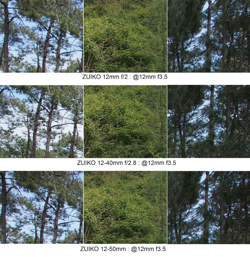 Comparo 12mm f2 / 12-40mm f2.8 / 12-50mm @12mm 12mm_f12