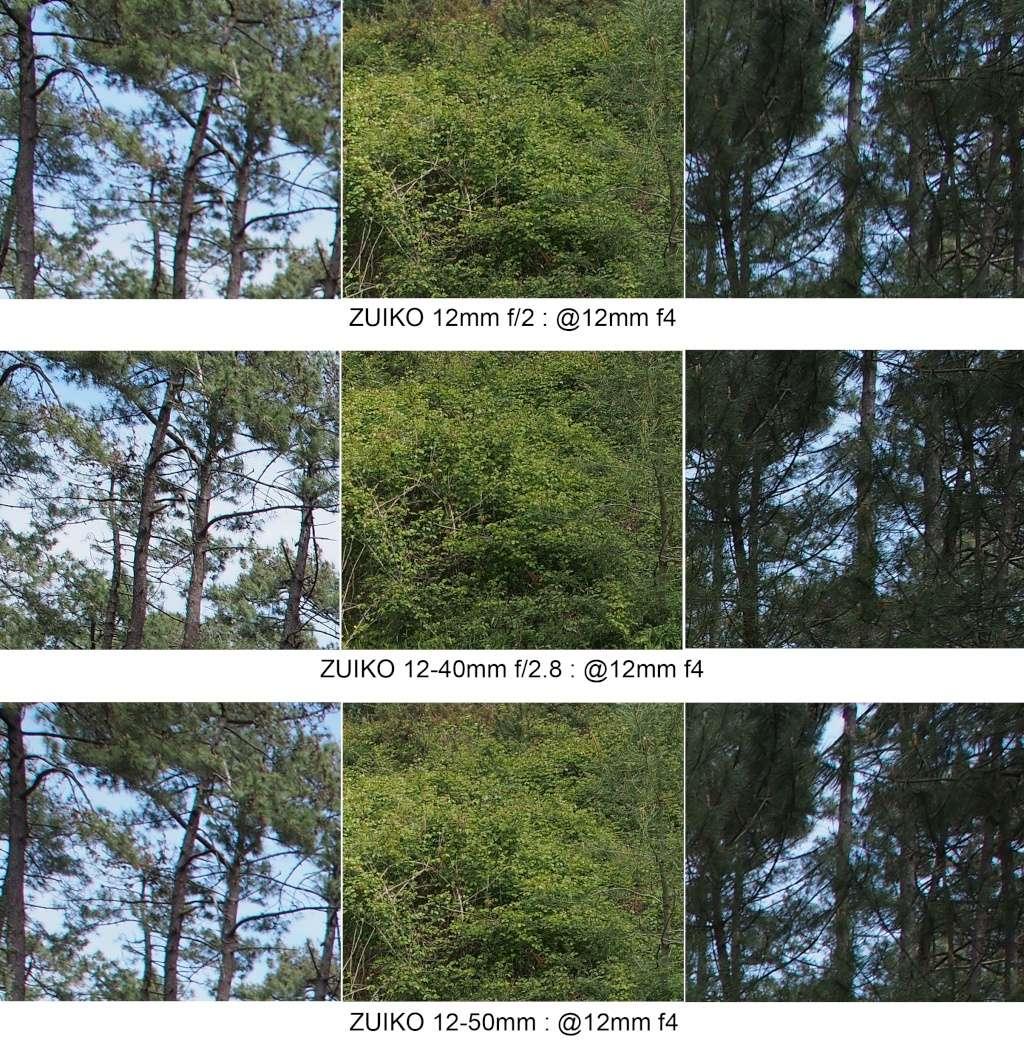 Comparo 12mm f2 / 12-40mm f2.8 / 12-50mm @12mm 12mm_f13