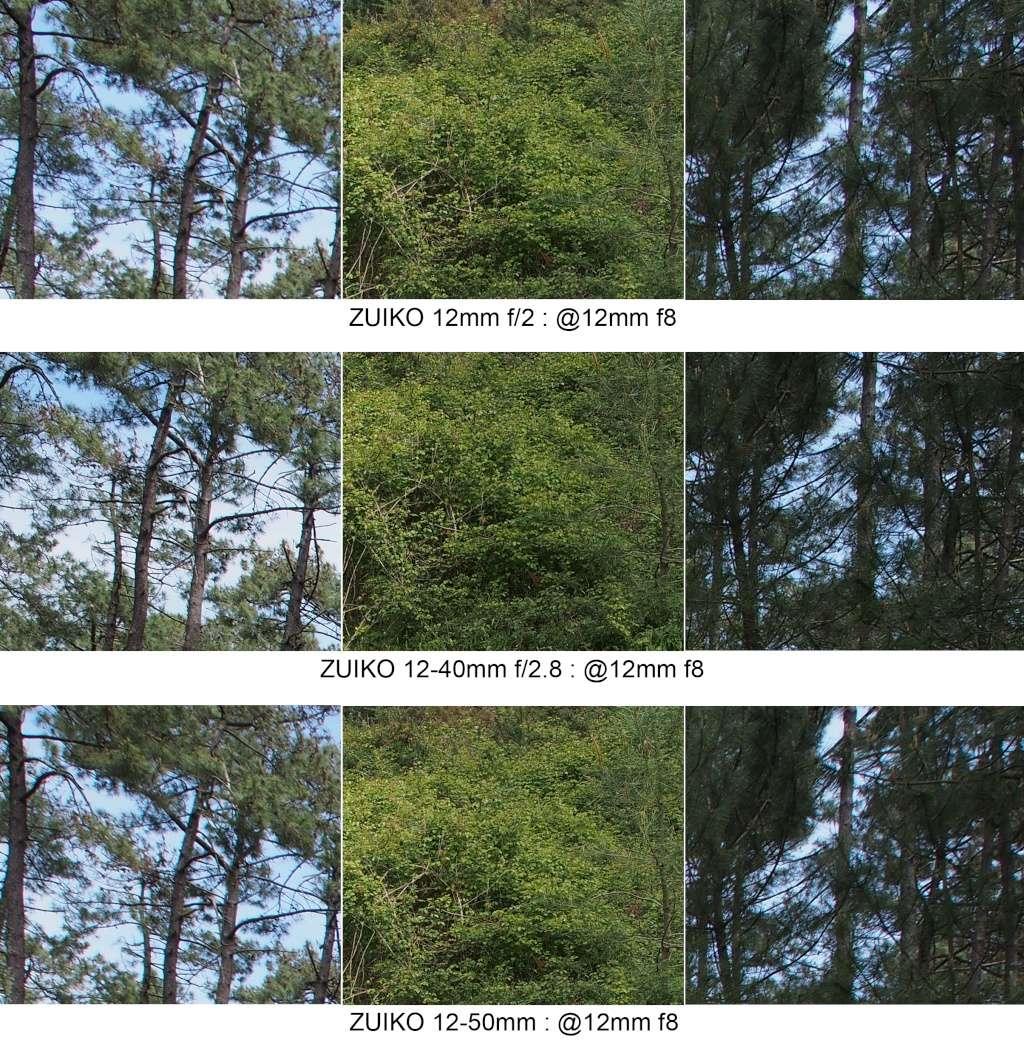 Comparo 12mm f2 / 12-40mm f2.8 / 12-50mm @12mm 12mm_f14
