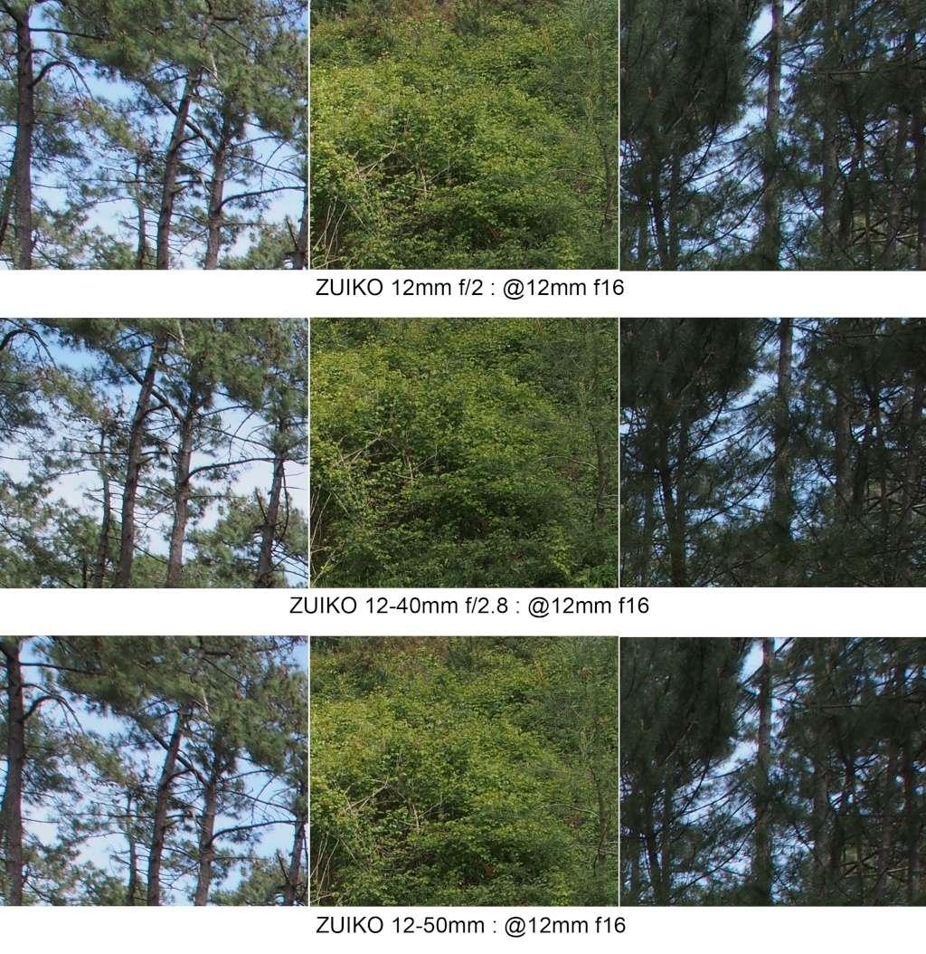 Comparo 12mm f2 / 12-40mm f2.8 / 12-50mm @12mm 12mm_f16