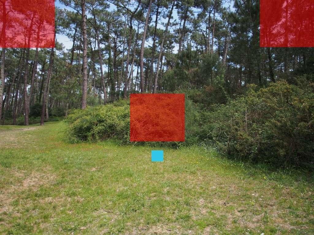 Comparo 12mm f2 / 12-40mm f2.8 / 12-50mm @12mm 12mm_m10