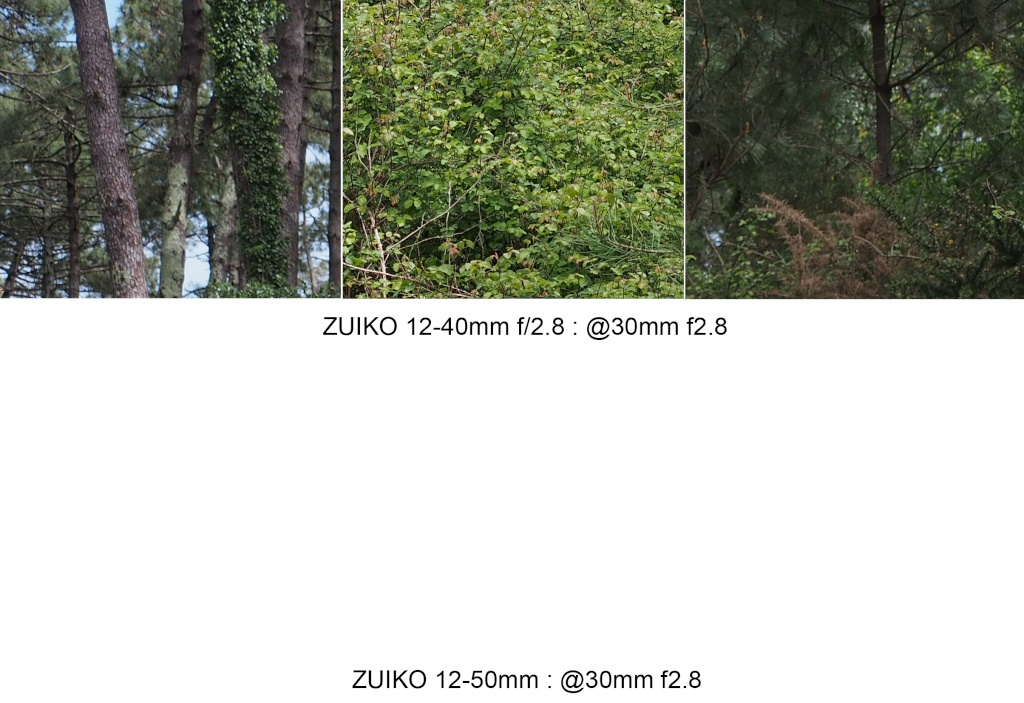 Comparo 12-40 f2.8 / 12-50mm @30mm 30mm_f10