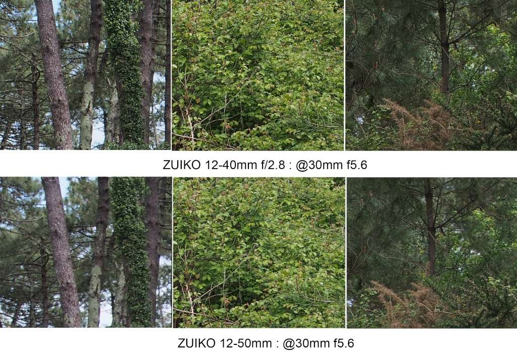 Comparo 12-40 f2.8 / 12-50mm @30mm 30mm_f11