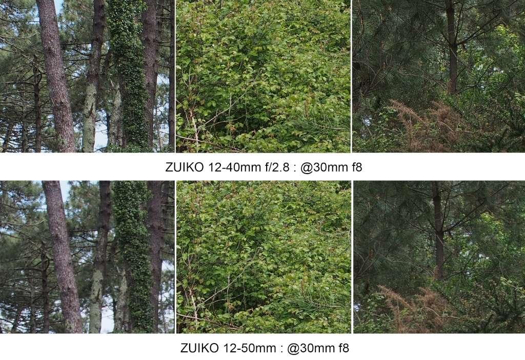 Comparo 12-40 f2.8 / 12-50mm @30mm 30mm_f12