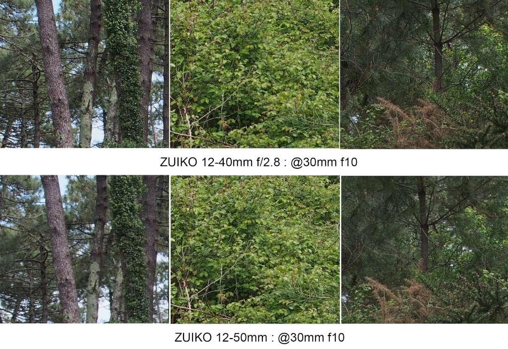Comparo 12-40 f2.8 / 12-50mm @30mm 30mm_f13