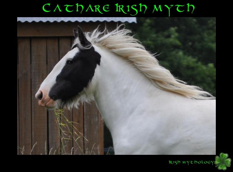 Cathare Irish Myth Dsc_0010