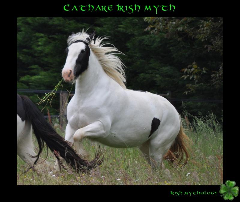 Cathare Irish Myth Dsc_0011