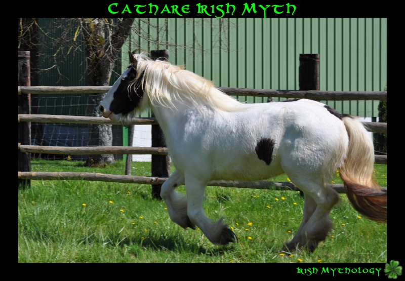Cathare Irish Myth Dsc_0016