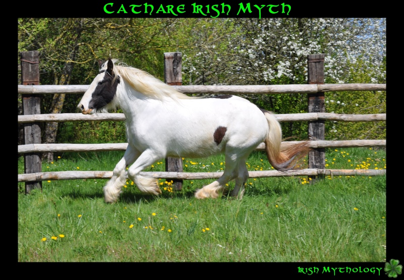 Cathare Irish Myth Dsc_0017