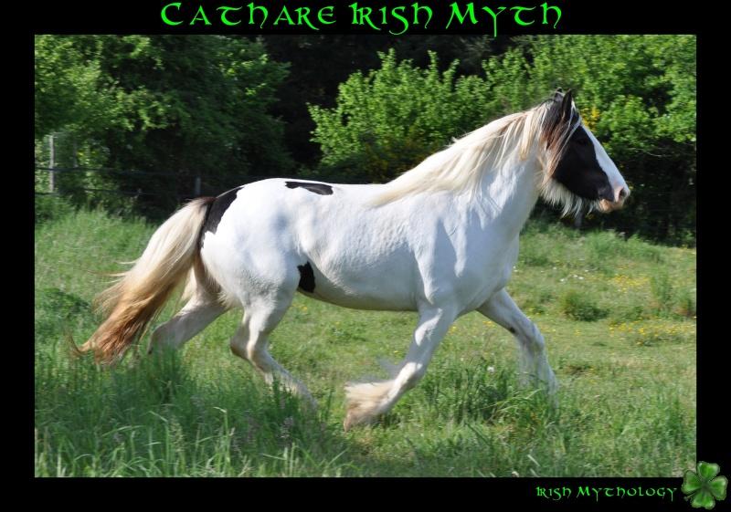 Cathare Irish Myth Dsc_0114