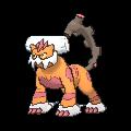 La Stratégie Pokémon, volume 2  - La Théorie du Build Dymyte10