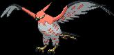 La Stratégie Pokémon, volume 2  - La Théorie du Build Flambu12