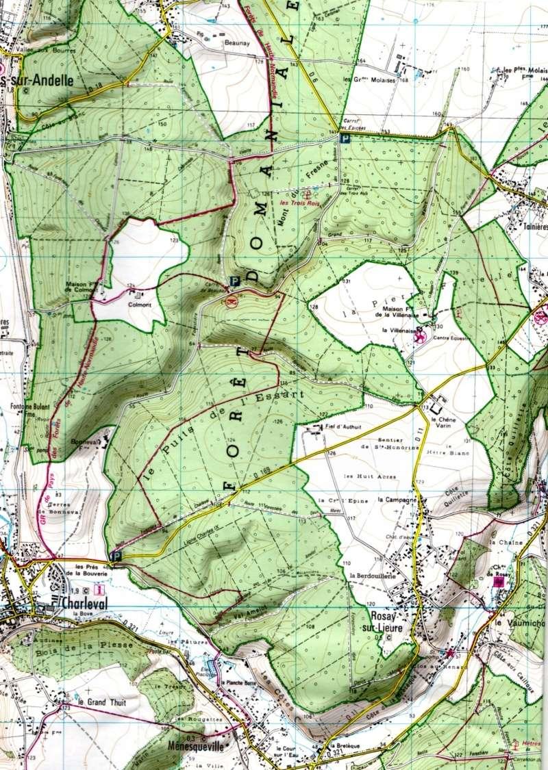 rando forêt de Lyons le 8 ami 2014 - Page 2 205-0510