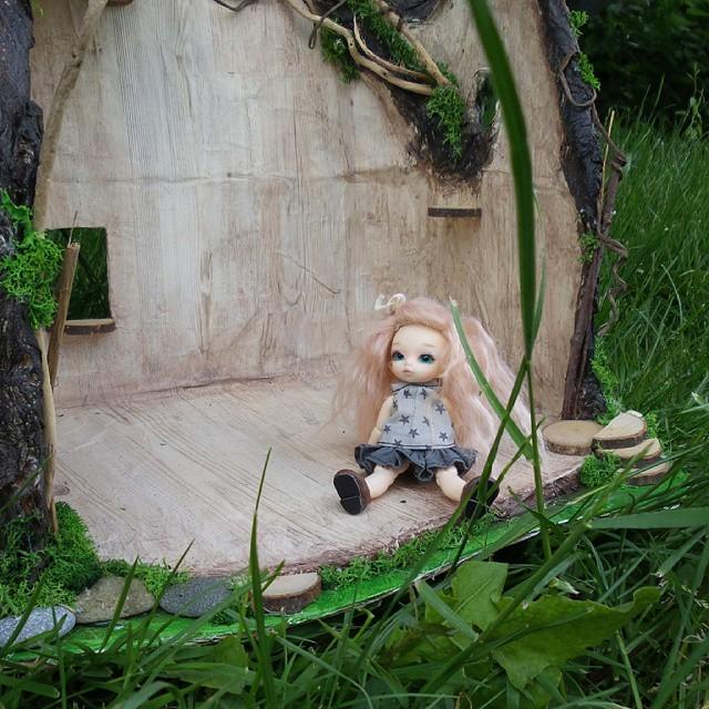 Maison de fée Puki, souche d'arbre Pullip 55146810