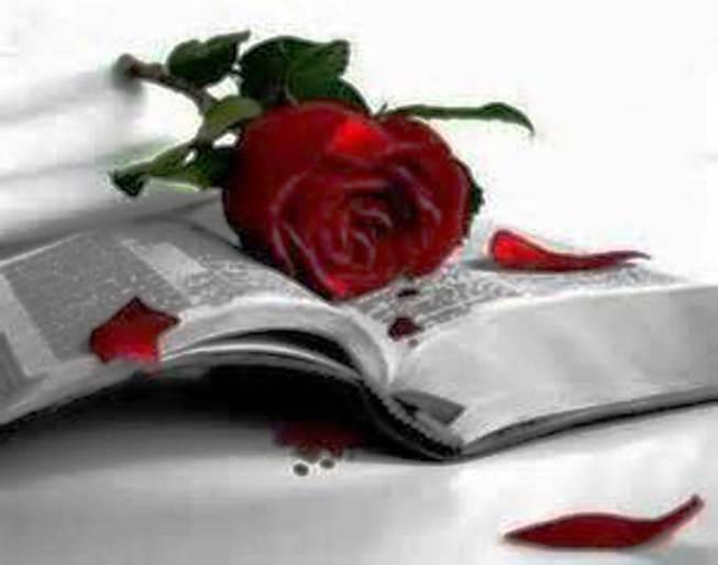 En Christ, le « Germe », tout le plan de Dieu se réalise pleinement  _1thzx10