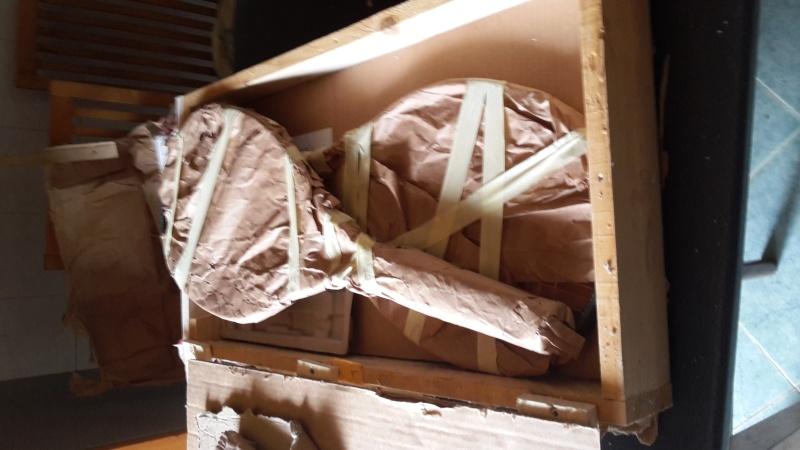 E' arrivato il sarcofago! Hlro310