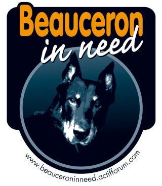Beauceron In Need Autoco10
