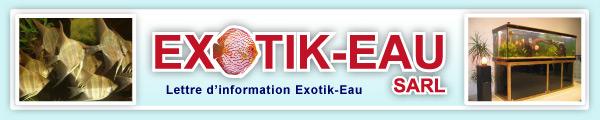 exotik-eau (discus) - Page 2 Top-g10