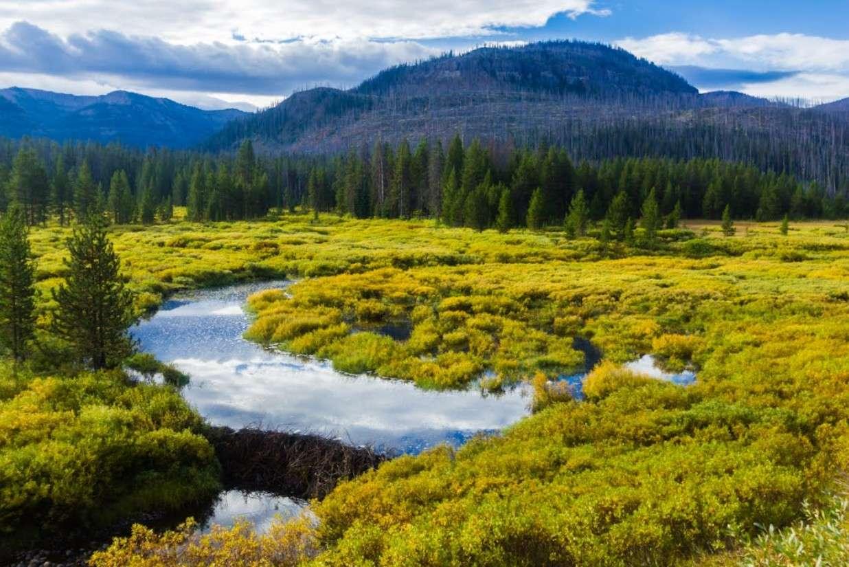 La rivière qui coule dans deux océans - Wyoming - USA 2015-154