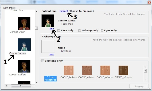 How to Extract Sims from your Game 410
