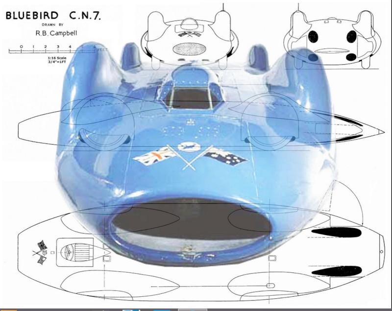 Bluebird CN7 310