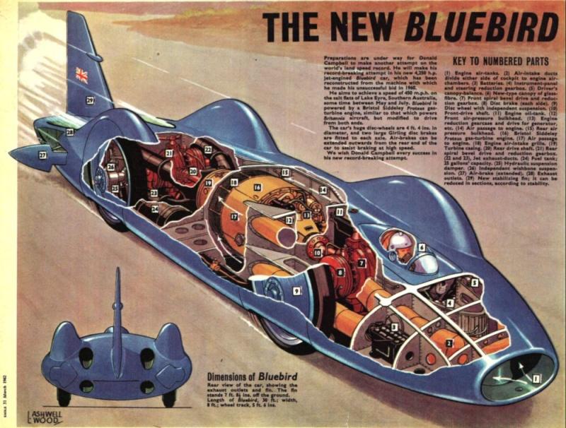 Bluebird CN7 Bluebi10
