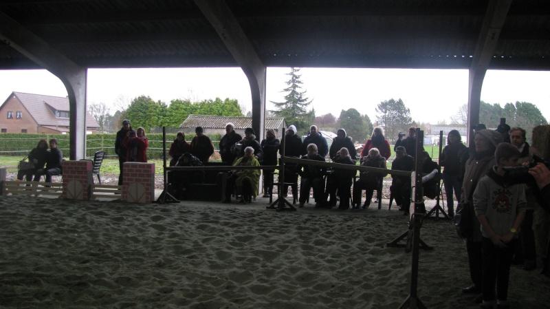Fête équestre à Pipaix (Leuze-en-Hainaut) le 29 mars 2015 Img_0816