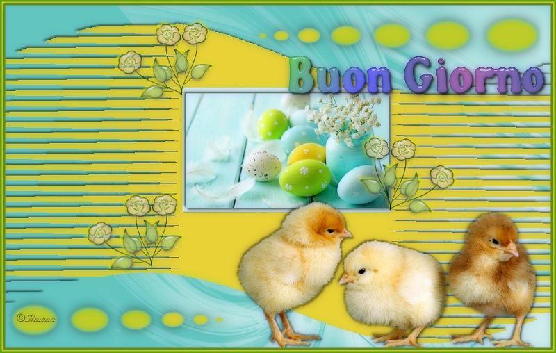 immagini +++Pasqua - Pagina 2 27mp10