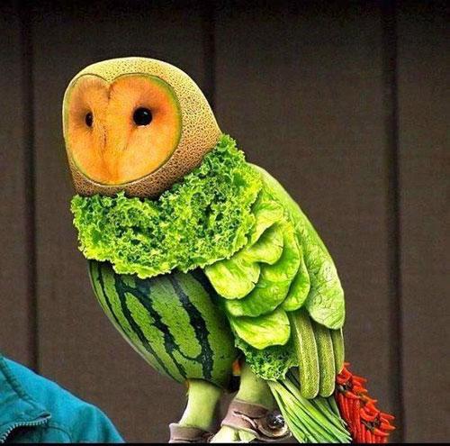Tạo hình động vật ngộ nghĩnh từ rau, củ quả 7-352010