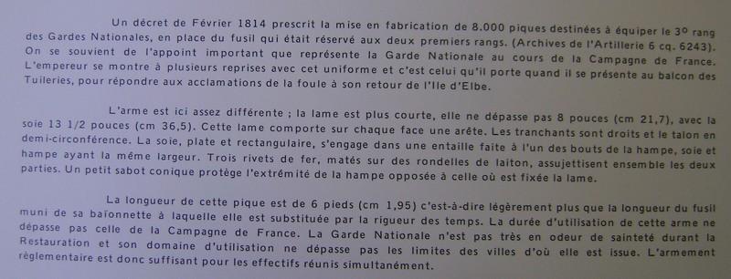 Pique napoléonienne  Dsc00030
