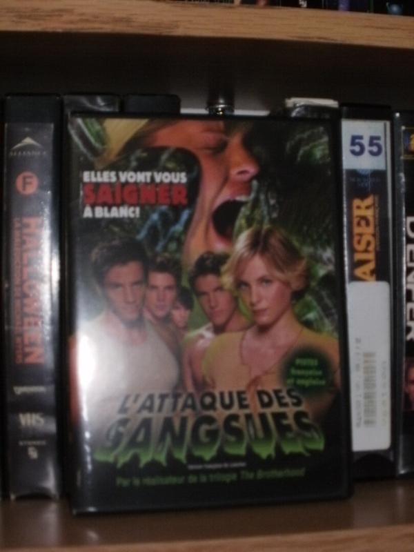 Votre collection de DVD d'horreur - Page 17 Pc250011
