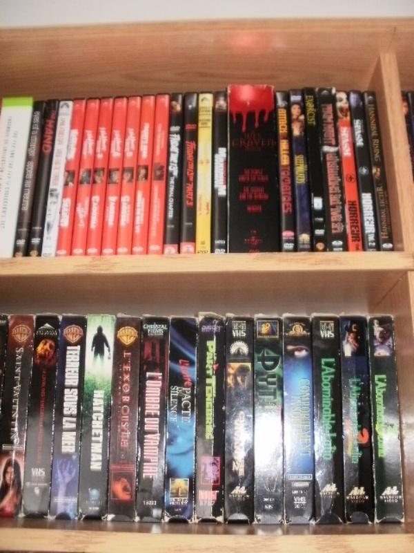 Votre collection de DVD d'horreur - Page 17 Pc250013