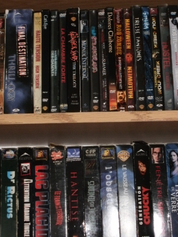 Votre collection de DVD d'horreur - Page 17 Pc250015