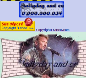 Compteur de visites HALLYDAY AND CO Captur15