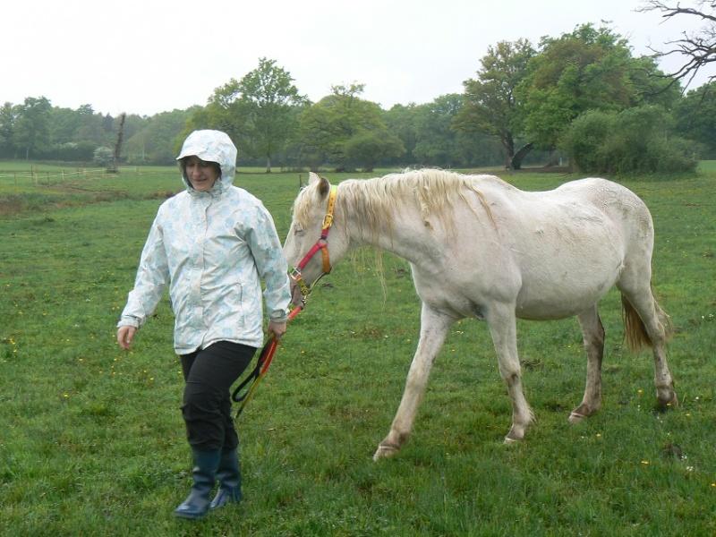 VENUS - ONC poney née en 1987 - adoptée en octobre 2012 par souris73 - Page 7 P1290811