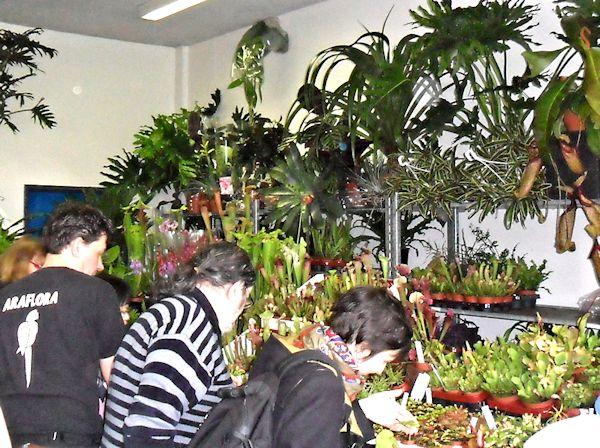 Expo Vente à Edenia en région parisienne, 28 et 29 mars 2015, Cergy Pontoise 95  Araflo11