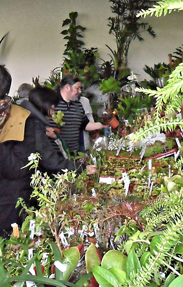 Expo Vente à Edenia en région parisienne, 28 et 29 mars 2015, Cergy Pontoise 95  Araflo13