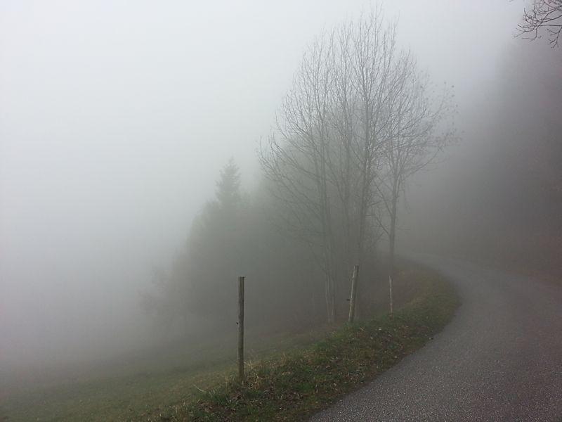 Bisse Torrent Neuf à Savièse (VS) Bisse_11