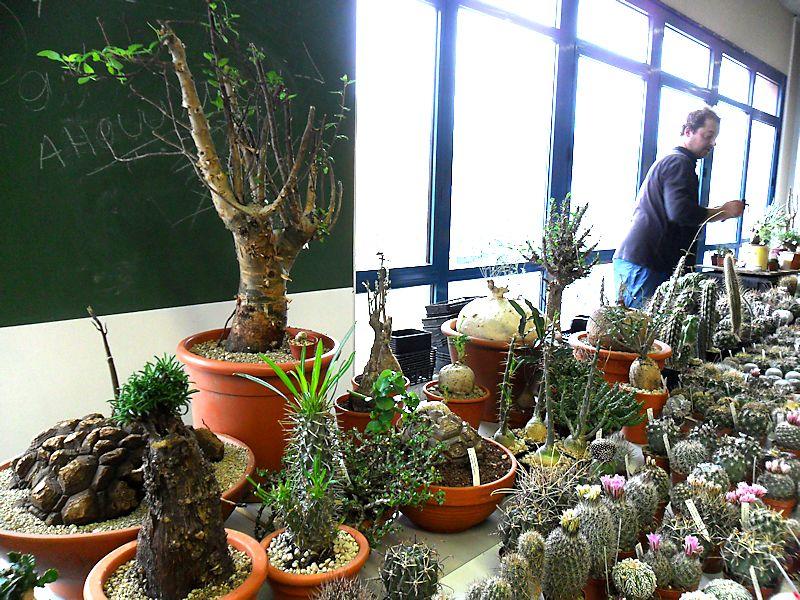 Expo Vente à Edenia en région parisienne, 28 et 29 mars 2015, Cergy Pontoise 95  Brende14