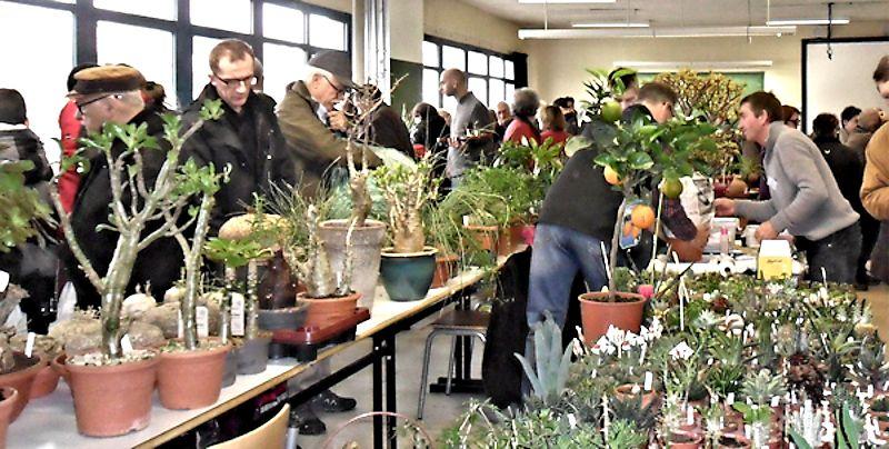 Expo Vente à Edenia en région parisienne, 28 et 29 mars 2015, Cergy Pontoise 95  Gillar10