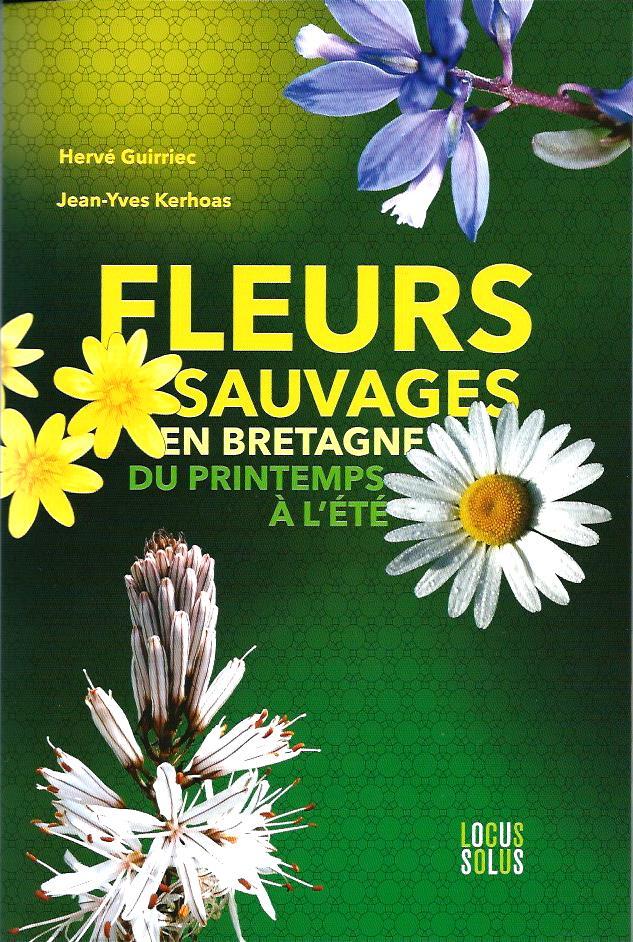 """La librairie """"Le Passage"""" à Brasparts /  samedi 10 décembre 2016 Fleurs10"""