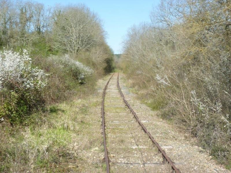 Le Train de l'Albret sur les rails ? - Page 2 11p12710