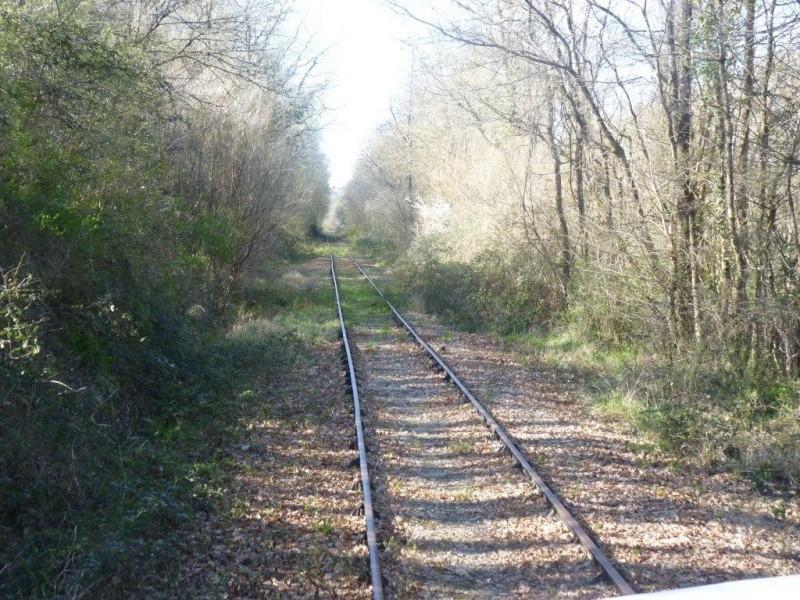 Le Train de l'Albret sur les rails ? - Page 2 12p12710