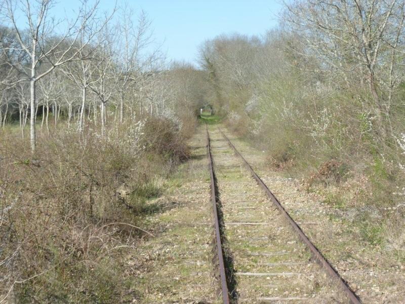 Le Train de l'Albret sur les rails ? - Page 2 13p12710