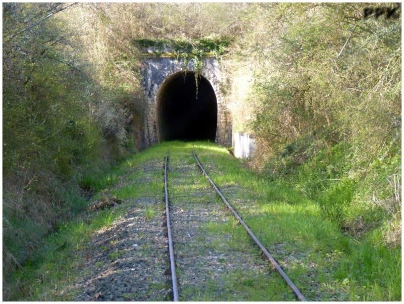 Le Train de l'Albret sur les rails ? - Page 2 2015-015