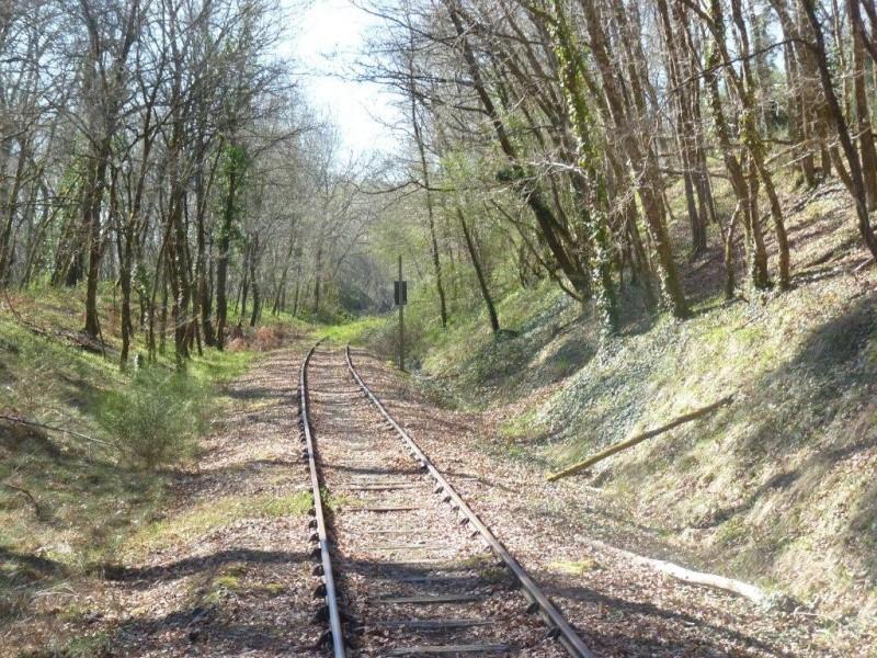 Le Train de l'Albret sur les rails ? - Page 2 24p12710