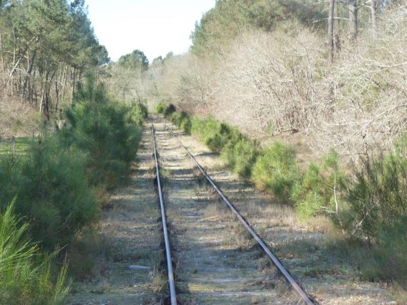 Le Train de l'Albret sur les rails ? - Page 2 31p12710