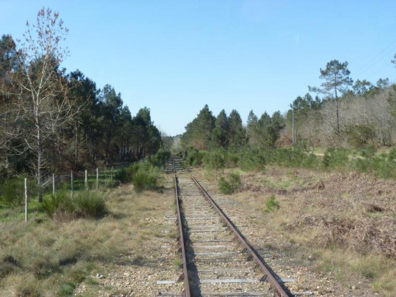 Le Train de l'Albret sur les rails ? - Page 2 33p12710